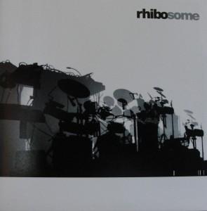 Rhibosome Instalation Sombre